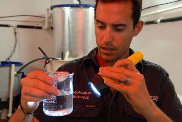Scientist examining a water sample